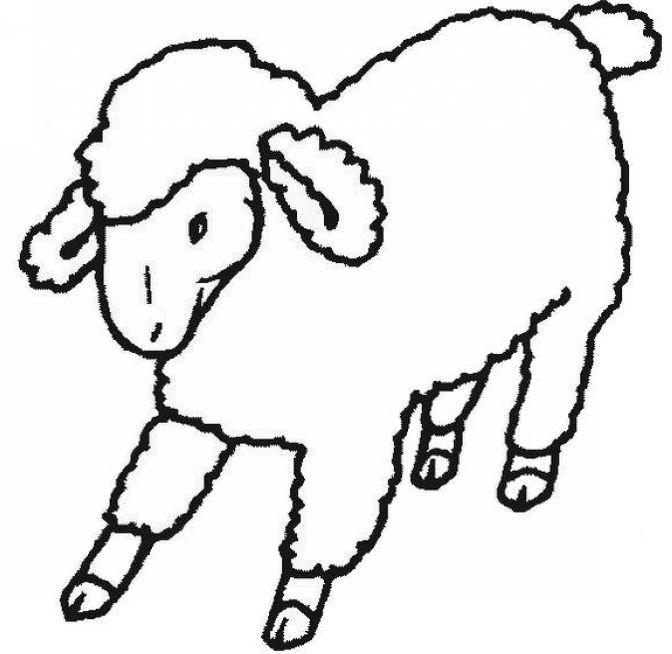 צביעה כבשה