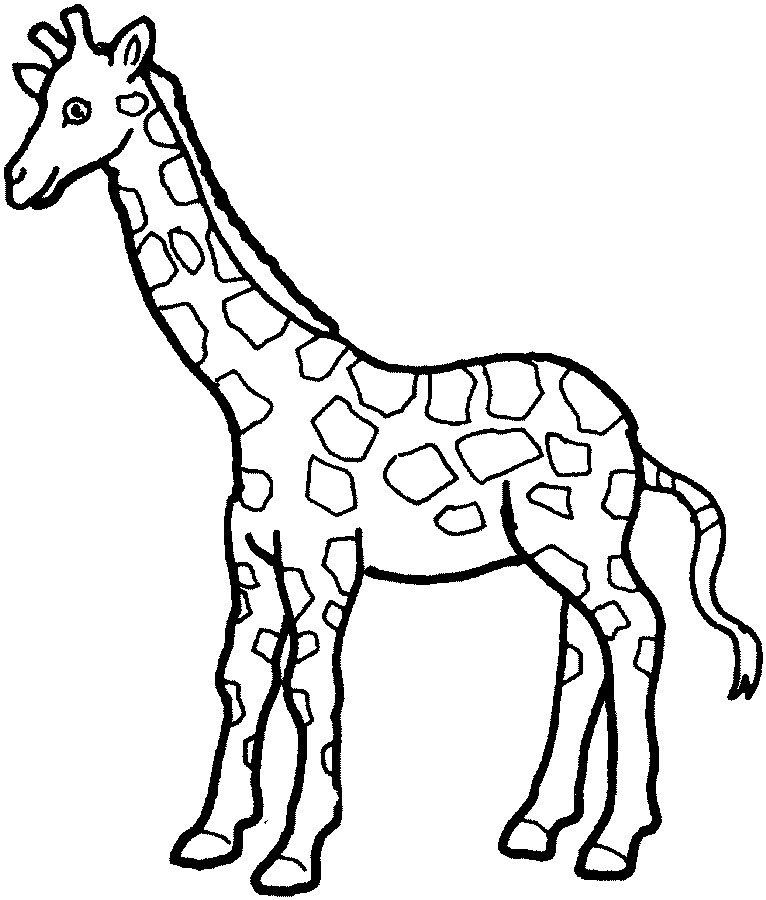 Outline of Giraffe for Preschoolers http://www.childstoryhour.com/coloringanimal2.htm