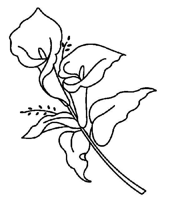 Easter Flowers Colouring Pages : Easter